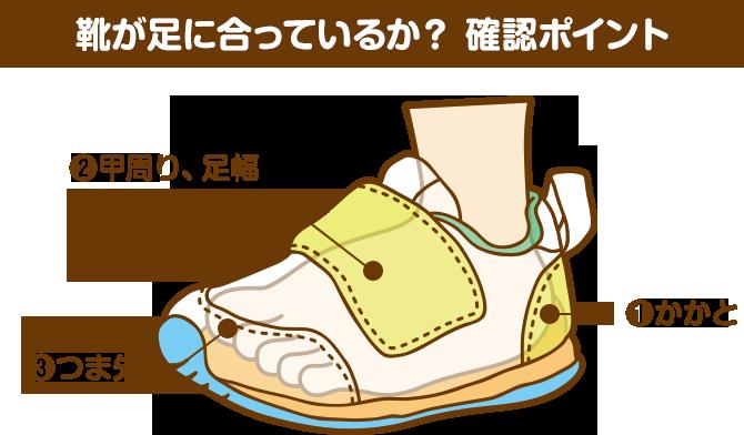 靴が足に合っているか?確認ポイント